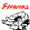 Flowers - When You Lie