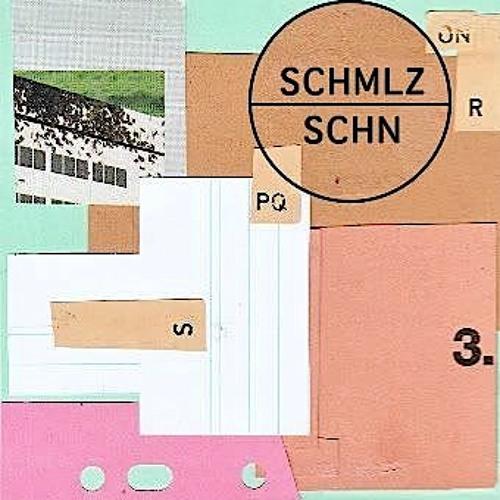 SCHMLZ & SCHN | Die Nacht, die Lichter. | elektroaktivisten.de  - Podcast #1