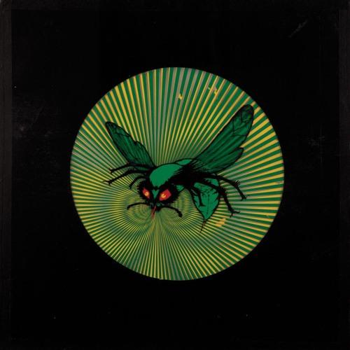 rokNbok - Hornet's Nest
