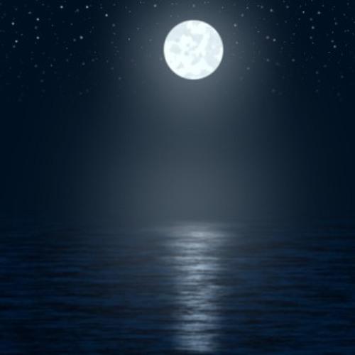 Moonlight (Improv 1-1-13)