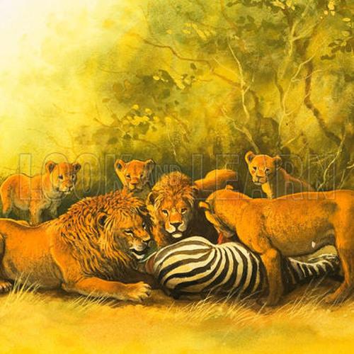 Jungle Etiquette