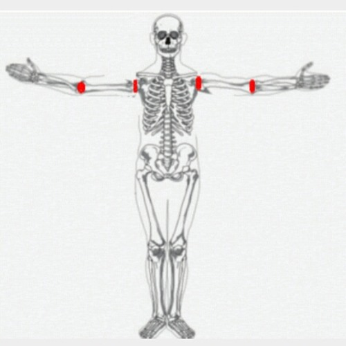 Arms Length