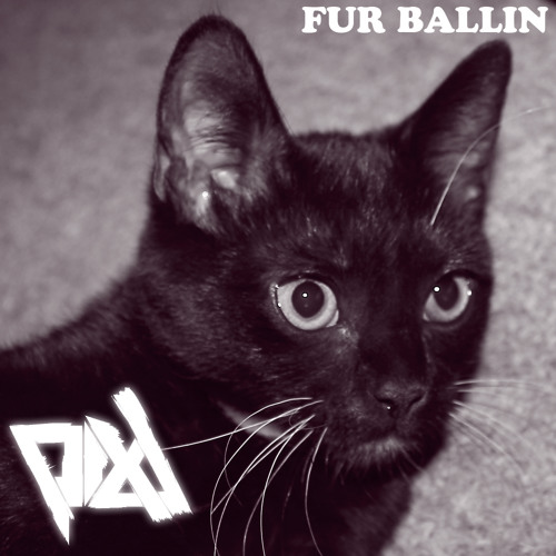 Fur Ballin by PIXL & Zef The Cat