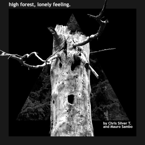 high forest,lonely feeling.(Chris Silver T & Mauro Sambo) track#15
