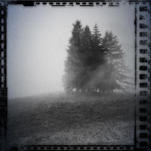 Forse il sole dietro la nebbia