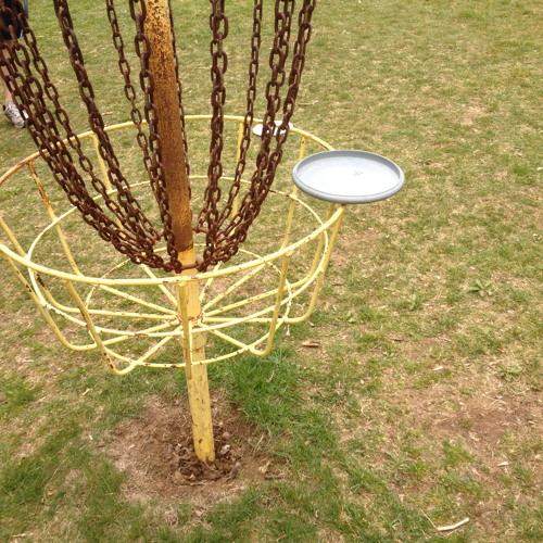 Disc Golf Chains x3