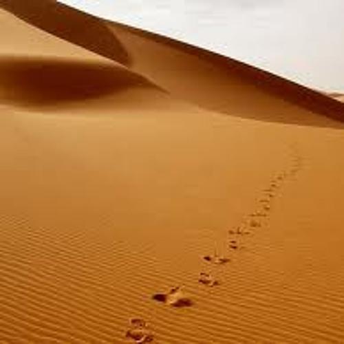 Hallberg - Following Footsteps (Jonatan F. Remix)