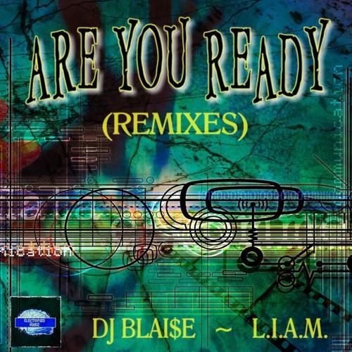 Are You Ready - DJ Blai$e (DJ Blai$e Remix) Available at Beatport now!