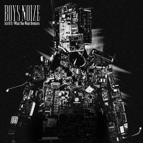 Boys Noize - What You Want (TOM BREU REMIX)