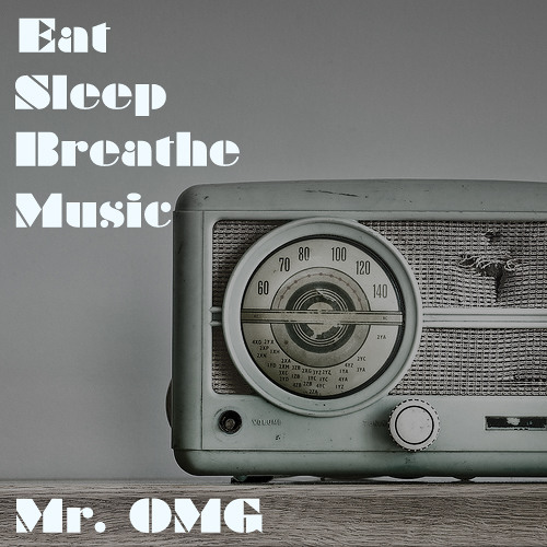 Mr. Omg - While I'm Gone