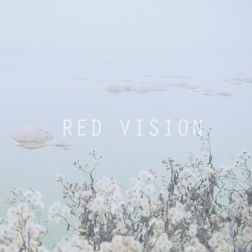 Haunt - Bastille (Red Vision Edit)