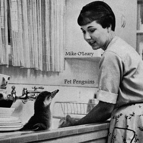 Pet Penguins