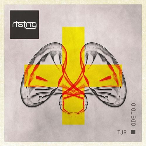 BASTO Vs. TJR - Ode To Storm Dick Man (Ludo Reussini Remix)