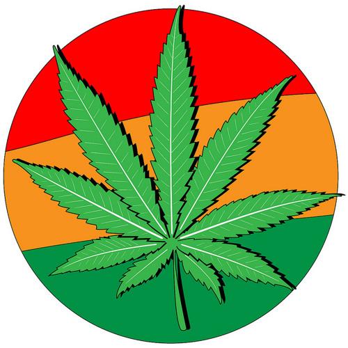 Legalizing Marijuana & the Drug War (Lp1042013)