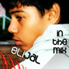 elijaL ft. Fun - Some Nights (elijaL Electro Remix)
