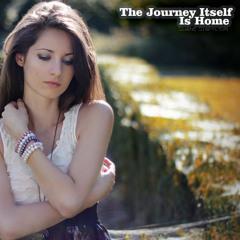 Shane Stapylton - The Journey Itself is Home