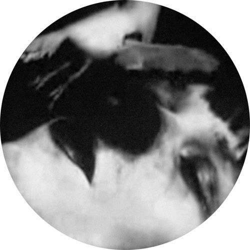 MRECLTDGS03 - Asma - Zwartjes (Incl. Silent Servant Remix)
