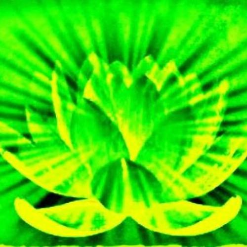 Lotus Flower [DK's Lotus Eater's DTs Mix]