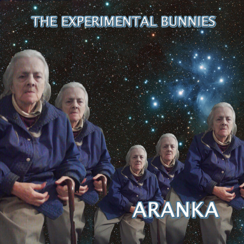 Space Funk Sticks - The Experimental Bunnies