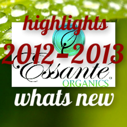 Recap Of 2012 New In 2013 Find Your Excellence With CEO of Essante Organics Michael Wenniger