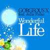 Gorgeous X feat. Julia Falke - Wonderful Life (Bekay vs. Phunkless Remix)