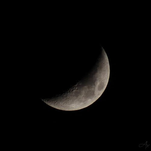 Kamu - The dark side of the moon (04.01.2013)