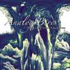Analog Birds - 04 Through The Woods