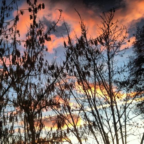 tramonto di inizio anno (music for a film to come)