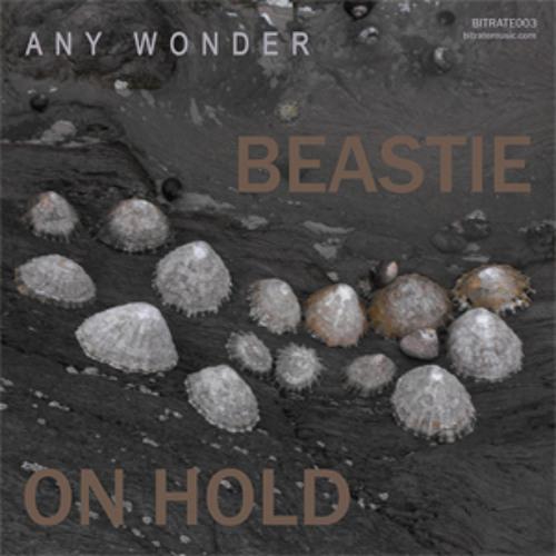 Any Wonder - Beastie