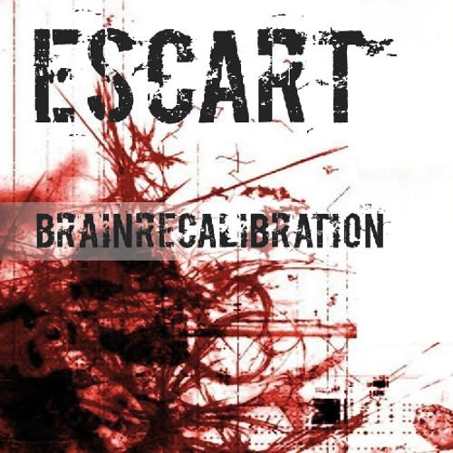 Brainrecalibration