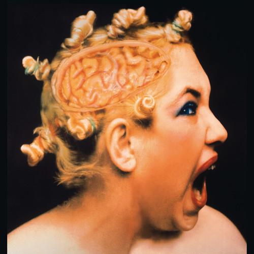 Od Tiziana po Warhola: Veronika Bromová—Z cyklu Pohledy