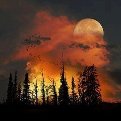 Lunar ticket - sunrise