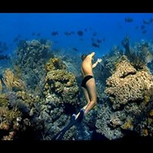 Electronic I  - Underwater