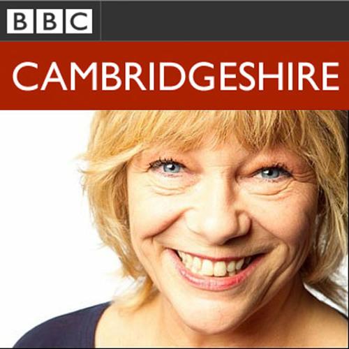 BBC Cambridge - Interview + Session - Sue Marchant
