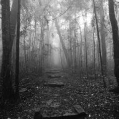 Rune -Ghosthunt (feat E.Lok & Ssb)