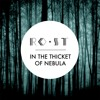 RO•ST - In The Thicket Of Nebula