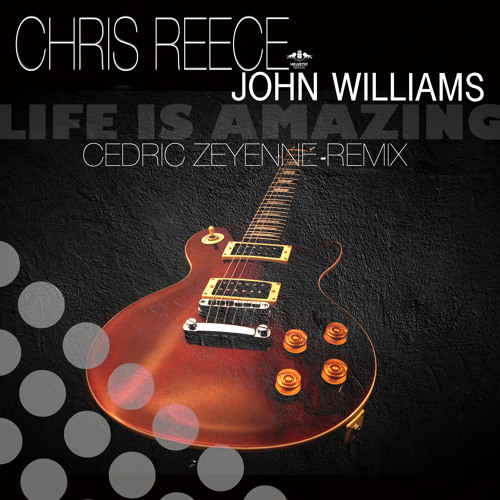 Chris Reece & John Williams - Life Is Amazing (Cedric Zeyenne Remix)