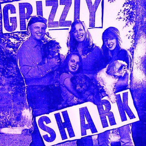 GRIZZLY SHARK - THE STONE