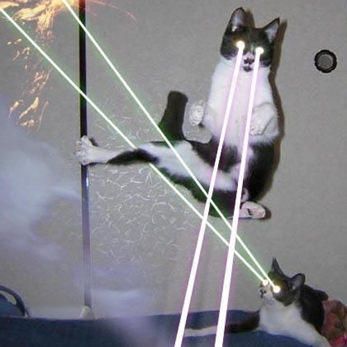 Cosmic cats from outer space
