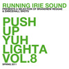 PUSH UP YUH LIGHTA VOL.8 - RUNNING IRIE SOUND - 2011