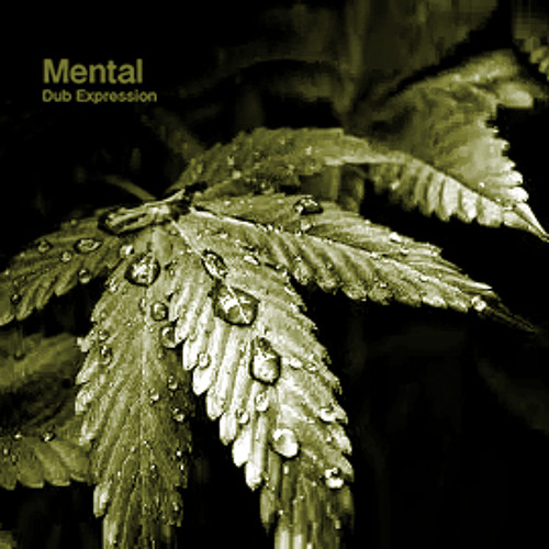 Mental Dub Expression - Raindrops (ambiental version)
