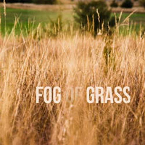 Fog Of Grass