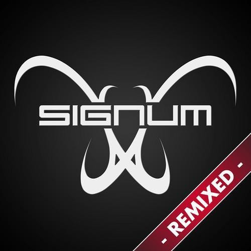 Signum - Beyond This Earth (Jason van Wyk Remix) (Sample)