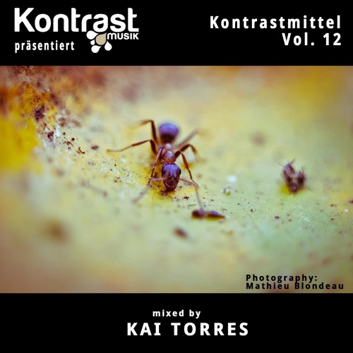 Kontrastmittel Vol. 12 mixed by Kai Torres