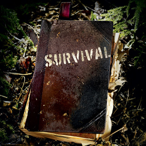 SURVIVAL MIX (DJ SCREAM)