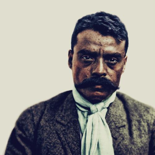 oriLUN (oriJanus x TEK.LUN) - Zapata