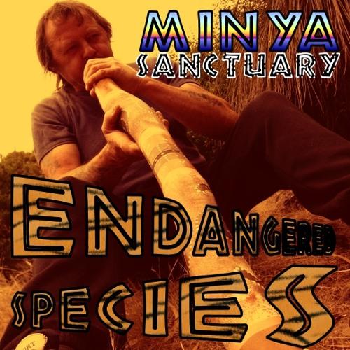 Minya Sanctuary - Dreamtime