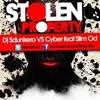 DJ SDUNKERO VS CYBER FT OD - RISE ABOVE - 01. STOLEN PROPERTY