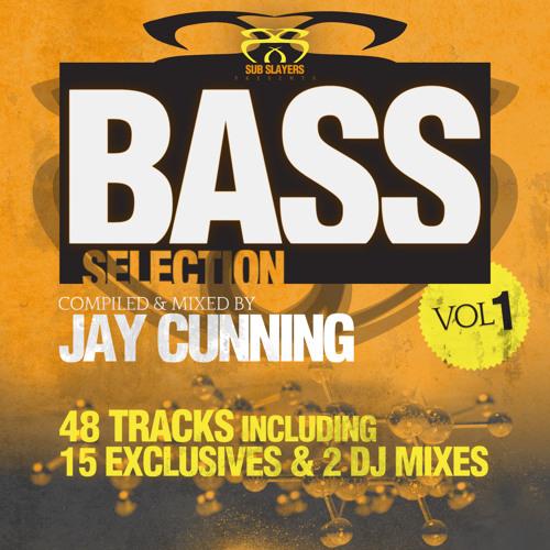King Yoof - Back 2 Hackney (Jay Cunning & Toronto Is Broken Remix) [Bass Selection Vol 1]