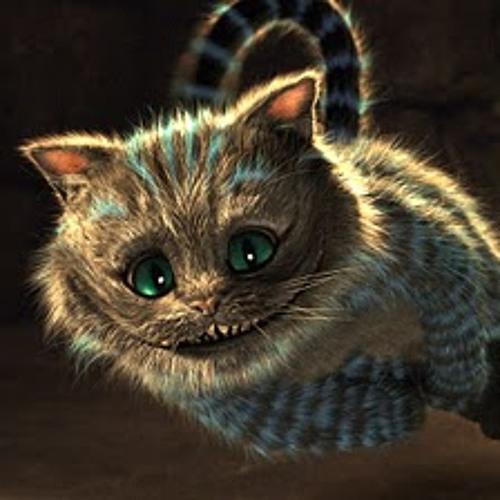 Catty's Wonderland